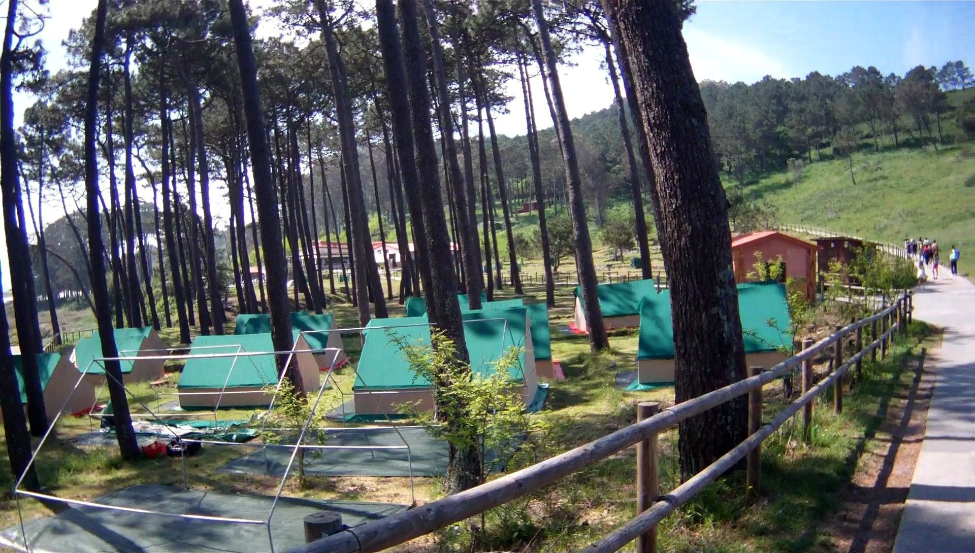 The Camping Site in the Cíes Islands